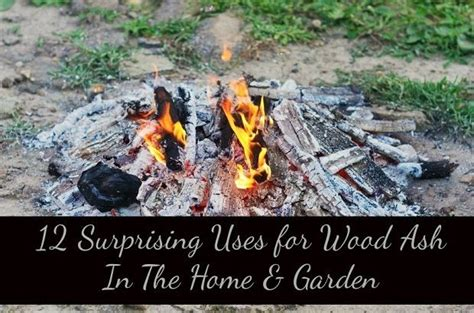 12 Surprising Uses For Wood Ash In The Home & Garden Architect Design Homes Custom House Plans Basic Free Adobe Style Floor Plan New Home Floorplans With 2 Master Suites Single Story