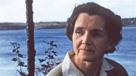 Get To Know The Mother Of The Modern Environmentalist