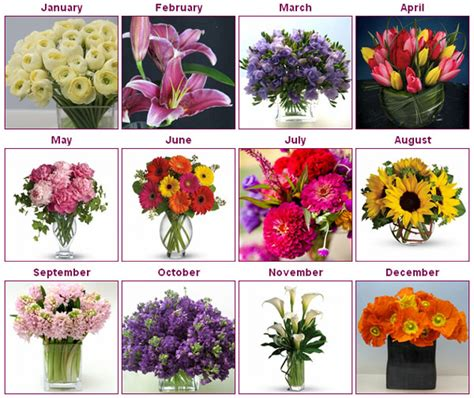 which flowers are in season