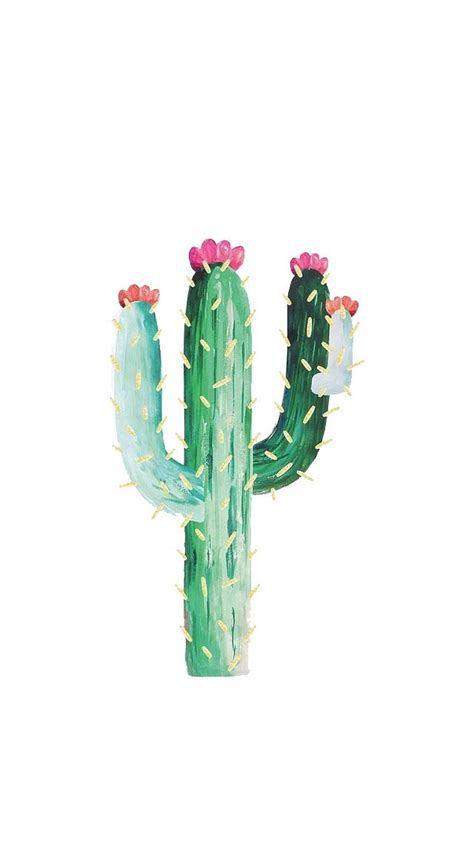 cactus wallpaper   jewellery phone backgrounds