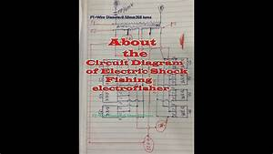 Here Show About Circuit Diagram Of Electric Shock Fishing