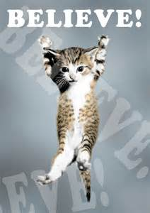 lego cat poster cat believe poster lego a3 size cats and lego