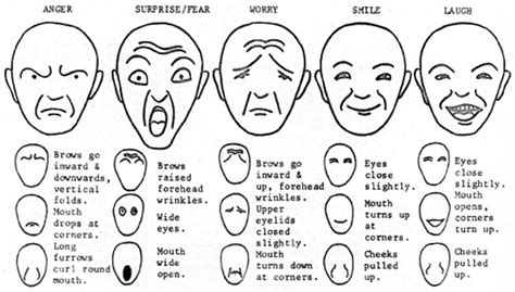 draw facial expressions  drawings show