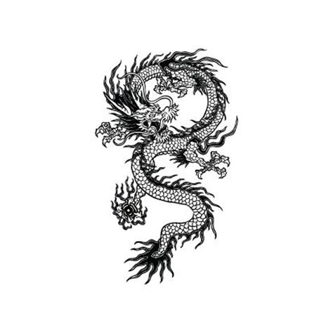 potatoo temporary tattoo chinese dragon