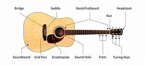 Know Your Acoustic Guitar