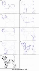 How To Draw A Dalmatian Dog Printable Step By Step Drawing