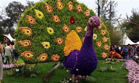 delhi flower show purana qila  delhi india   festival packages hotels