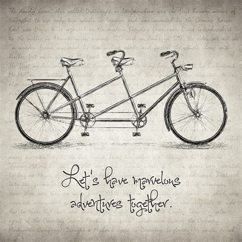 lets  marvelous adventures  quote bicycle