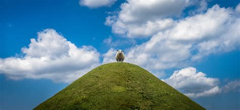 Sheep standing on top of a hill with clouds overhead image