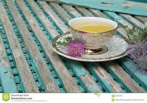 Milk Thistle Tea Stock Photo Image 58673967