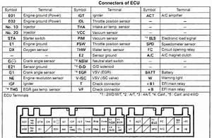 Wiring Diagram Toyota Vios