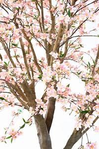 Plante Fleurie Intérieur : plante artificielle fleurie cerisier new large int rieur ~ Premium-room.com Idées de Décoration