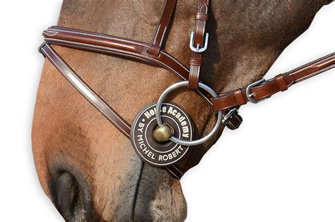 robert bit guards michel horse rubber brown academy