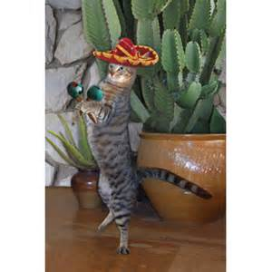diane markin inc wholesale catalog our products s 809 g mexican cat