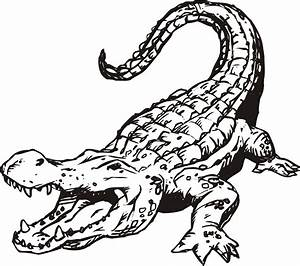 Images For > Alligator Drawing Outline | Icons - Gators ...