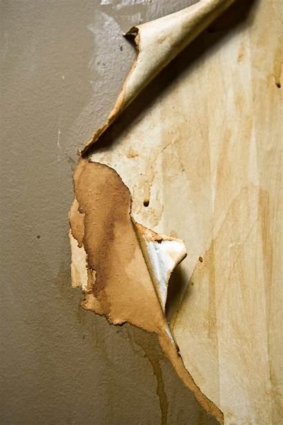 Paint Walls Removing Prepare