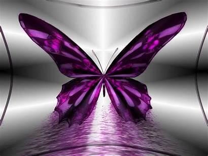 Butterflies Desktop Wallpapers 4k