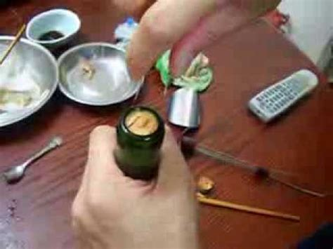 How To Get Wine Out Of A by How To Remove A Broken Cork Out Of A Wine Bottle Easy