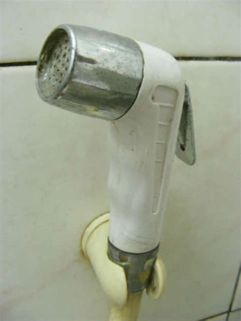 the toilet spray nozzle argument