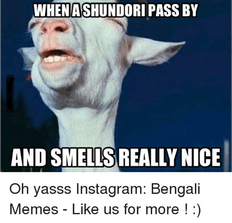 Yasss Meme - when ashundori passby and smells really nice oh yasss instagram bengali memes like us for more