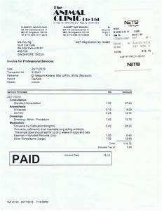 Veterinary invoice template mickeles spreadsheet sample for Veterinary invoice example
