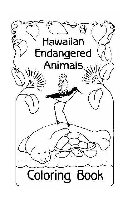 Endangered Coloring Animals Hawaiian Hawaii Species Wildlife