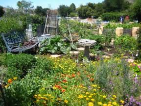 seasonal bee gardening uc berkeley bee lab