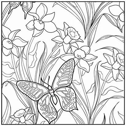 Coloring Pages Garden Adult Butterfly Beach Botanical