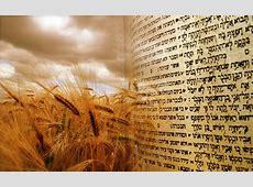 #18 Shavuot – Receiving of the Ten Commandments tamid nyc