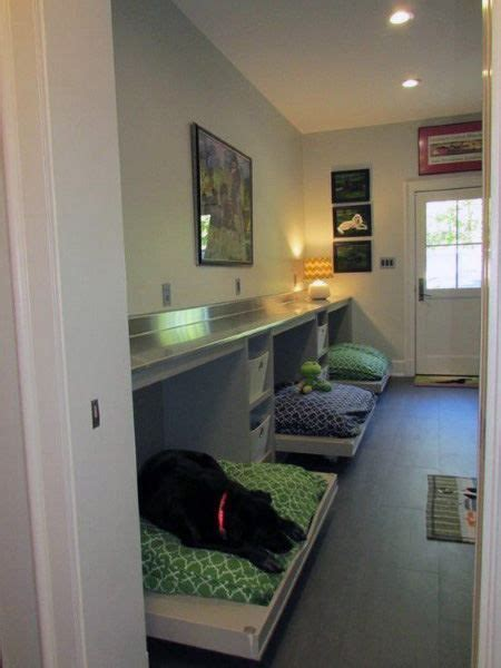 top   dog room ideas canine space designs dog rooms dog bedroom puppy room