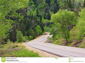 Narrow, Winding Road Entering Forest Stock Image - Image ...