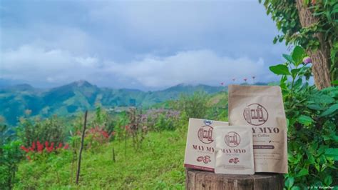 Your email address will not be published. May Myo Pure Coffee - Made in Myanmar