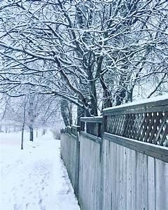 Bäume Umpflanzen Jahreszeit : kostenlose foto baum ast winter stra e frost eis wetter jahreszeit b ume schneesturm ~ Orissabook.com Haus und Dekorationen