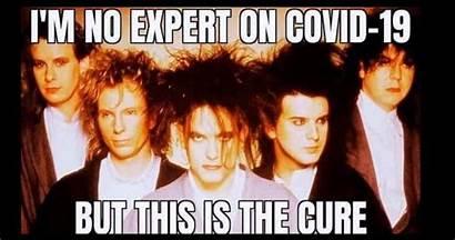 Cure Memes Coronavirus Close Hilarious Too Hit