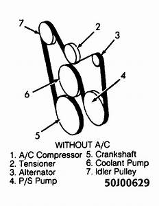1994 Oldsmobile Bravada Serpentine Belt Routing And Timing Belt Diagrams