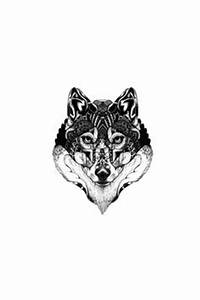 Tatouage Loup Graphique : 30 meilleures images du tableau tatouage loup tatouages ~ Mglfilm.com Idées de Décoration