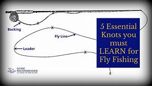 5 Essential Knots You Must Learn For Fly Fishing