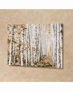 check out these bargains on birch tree canvas wall art With kitchen cabinets lowes with birch trees wall art
