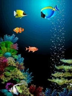 Fish Animated Wallpaper For Mobile - animated fish wallpaper with 61 items