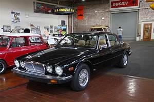 Jaguar Xj6 Series 3 - 1983