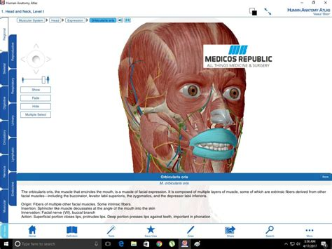 Visible Body Human Anatomy Atlas For Pc (free Download