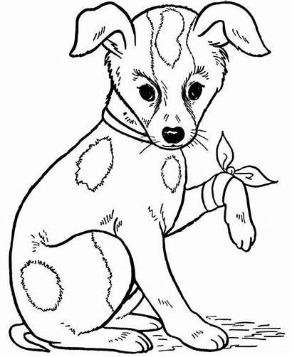 Coloring Dog Pages Injured Pet Leg Puppy