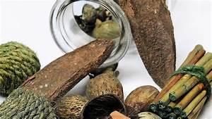 Weihnachtsbasteln Mit Holz : basteln mit holz waldwichtel aus naturmaterialien basteln ~ Udekor.club Haus und Dekorationen