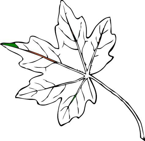gambar mewarnai daun pepaya