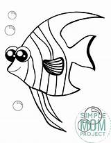 Angelfish sketch template