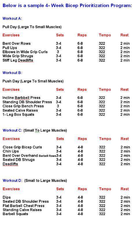 Bodybuilding Workouts Chartbodybuilding Workout Schedule