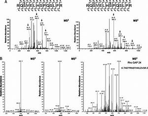 Identification And Confirmation Of Phosphorylation Sites