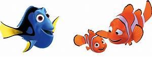 Findet Nemo Dori : naturfotografie eure bilder von unserer natur seite 324 allmystery ~ Orissabook.com Haus und Dekorationen