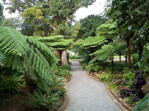 Botanischer Garten Durban by Durban Botanical Garden Gardening South