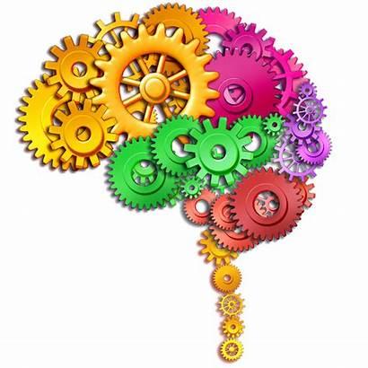Brain Calculator Colorful Cogs Smart Science